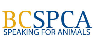 BRITISH COLUMBIA SOCIETY FOR THE PREVENTION OF CRUELTY TO ANIMALS