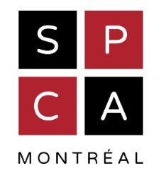 Fondation SPCA Montréal / Montréal SPCA Foundation