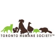 THE TORONTO HUMANE SOCIETY