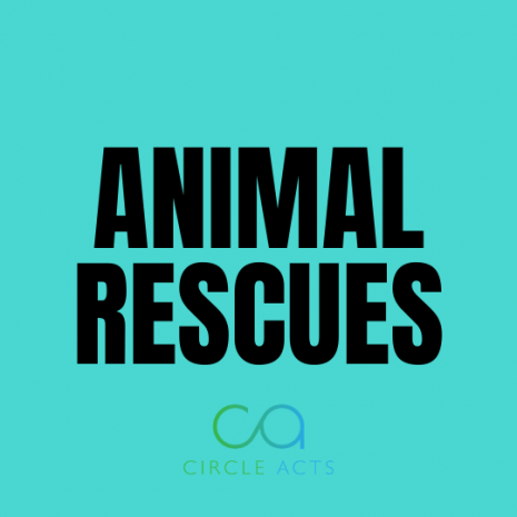 Animal Rescues Donations